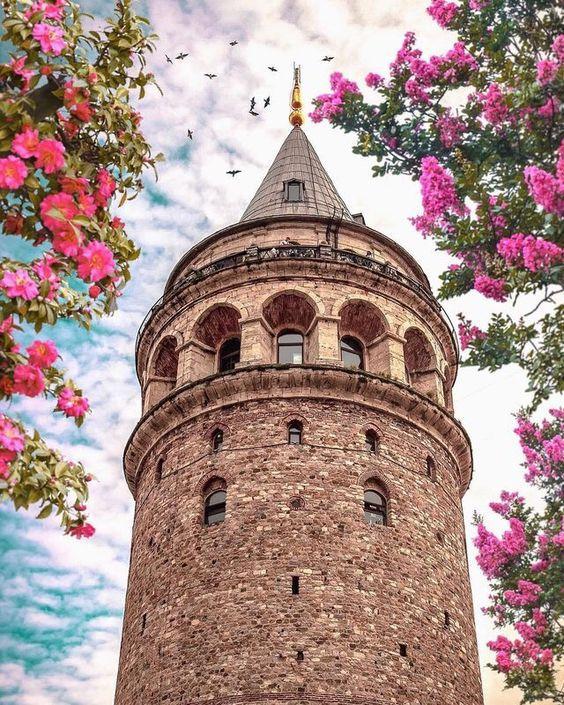 تورآفر تور استانبول