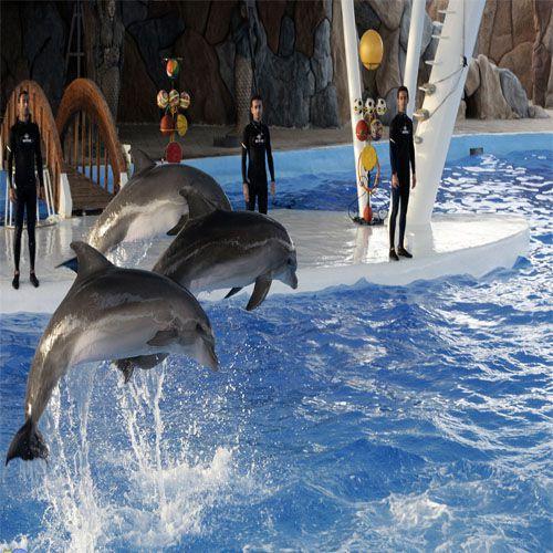 پارک دلفین و باغ پرندگان
